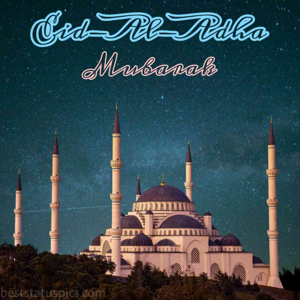 happy eid ul adha mubarak 2020 quotes images, photos and pictures