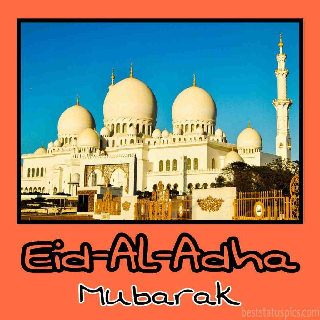 happy eid al adha 2020 pictures images status