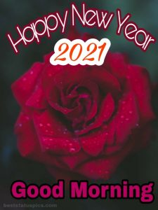 Romantic good morning happy new year 2021 with rose picture for Whatsapp