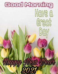 good morning and happy new year 2021 with rose flowers images HD for whatsapp status