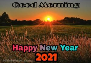 Beautiful good morning and happy new year 2021 wishes with nature and sunrise photos HD