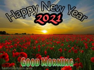 fresh good morning and happy new year 2021 wishes with nature, sunrise and rose garden photos HD