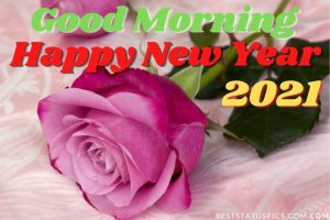 Good morning and happy new year 2021 wishes images with rose flower for lover
