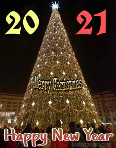 merry christmas and happy new year 2021 photos HD with big Christmas tree free download
