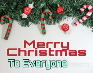 Beautiful xmas merry christmas 2021 wishes to everyone with picture for Facebook