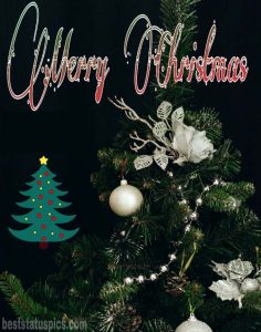 Wonderful merry xmas 2021 wishes images HD for Whatsapp