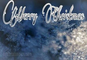 New merry christmas 2021 wishes with nature and winter pic HD for Instagram story
