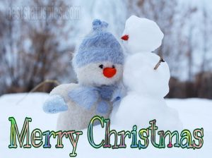 Sweet merry christmas 2021 wishes with white teddy bear and snow images HD