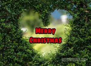 Sweet merry christmas 2021 wishes with love images for facebook story and status