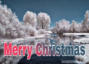 Beautiful merry christmas 2021 wishes DP and HD winter wallpaper for Whatsapp