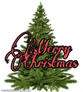 merry christmas 2020 wishes images HD free download