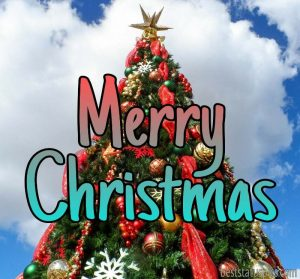 merry christmas wishes 2021 with pic for Whatsapp