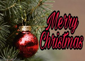 merry christmas wishes 2021 with photo for Whatsapp DP