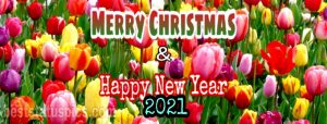 Merry Christmas and happy new year 2021 wishes picture for facebook cover and profile