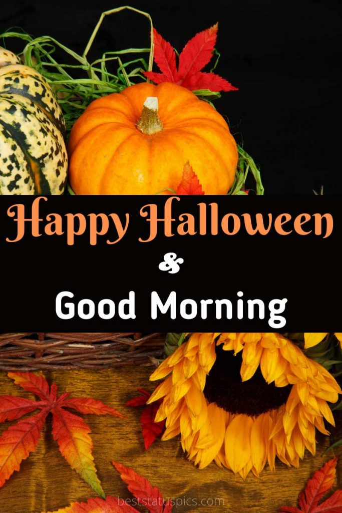 Happy Halloween Good morning 2021 with flower images