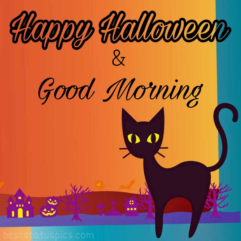 good morning halloween 2021 with scary cat