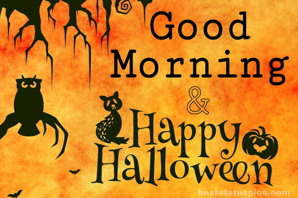scary good morning halloween 2021 photo with cat