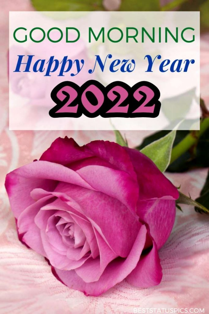 Good Morning Happy New Year 2022 wishes with red rose pic for pinterest