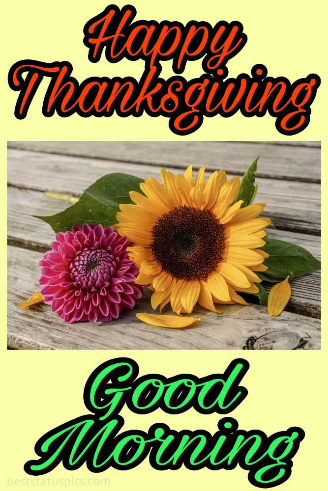 Cute Happy thanksgiving Good morning 2021 wishes image with flower