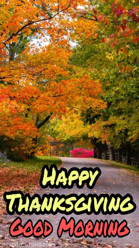 Good morning Happy Thanksgiving 2021 images HD with nature