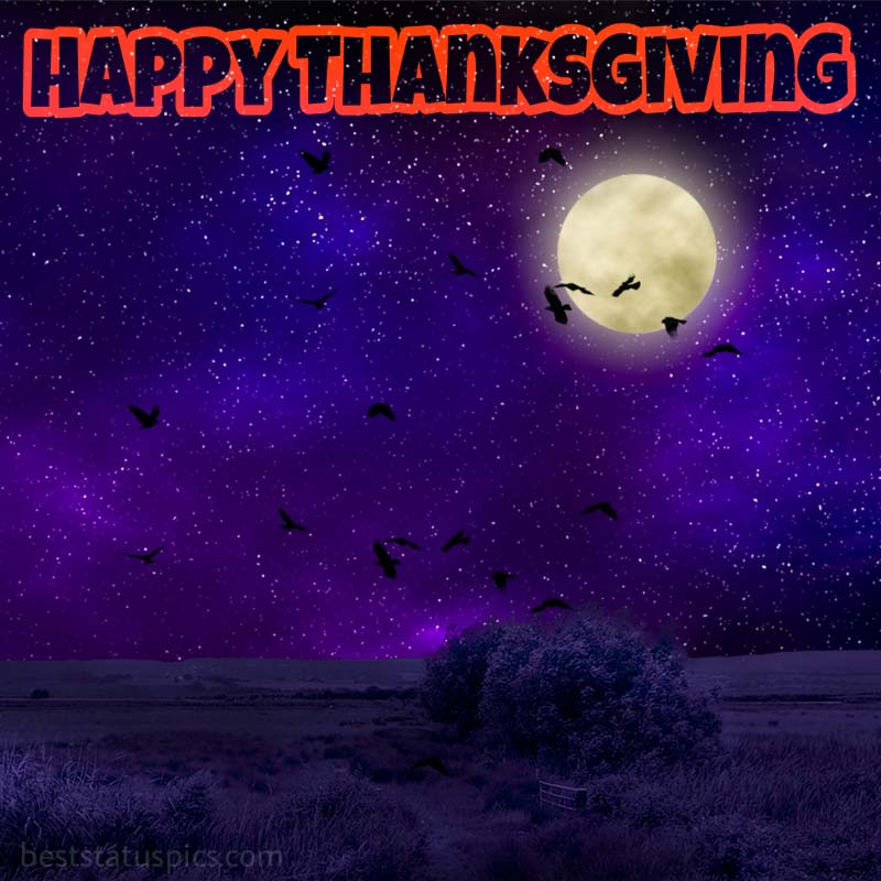 Happy Thanksgiving 2021 images with birds and moon