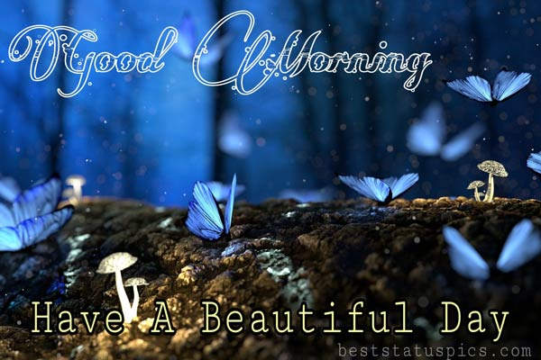 Beautiful Good morning wishes images HD, pictures, photos