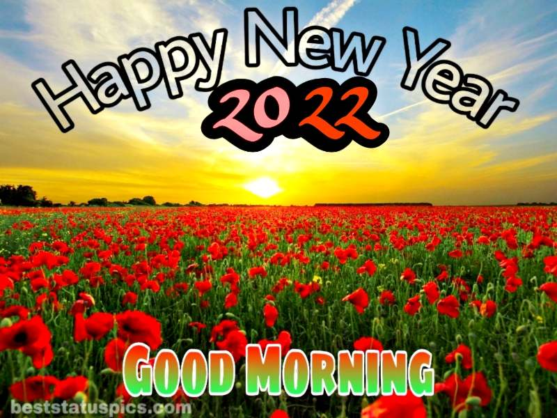 Happy New Year 2022 and Good Morning picture with nature, sunrise and rose garden