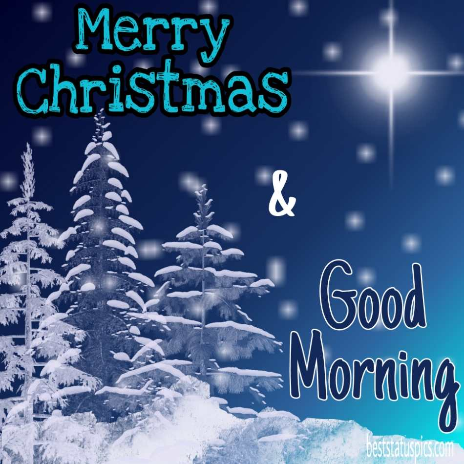 Beautiful Good morning merry christmas 2022 wishes images HD for friends and family