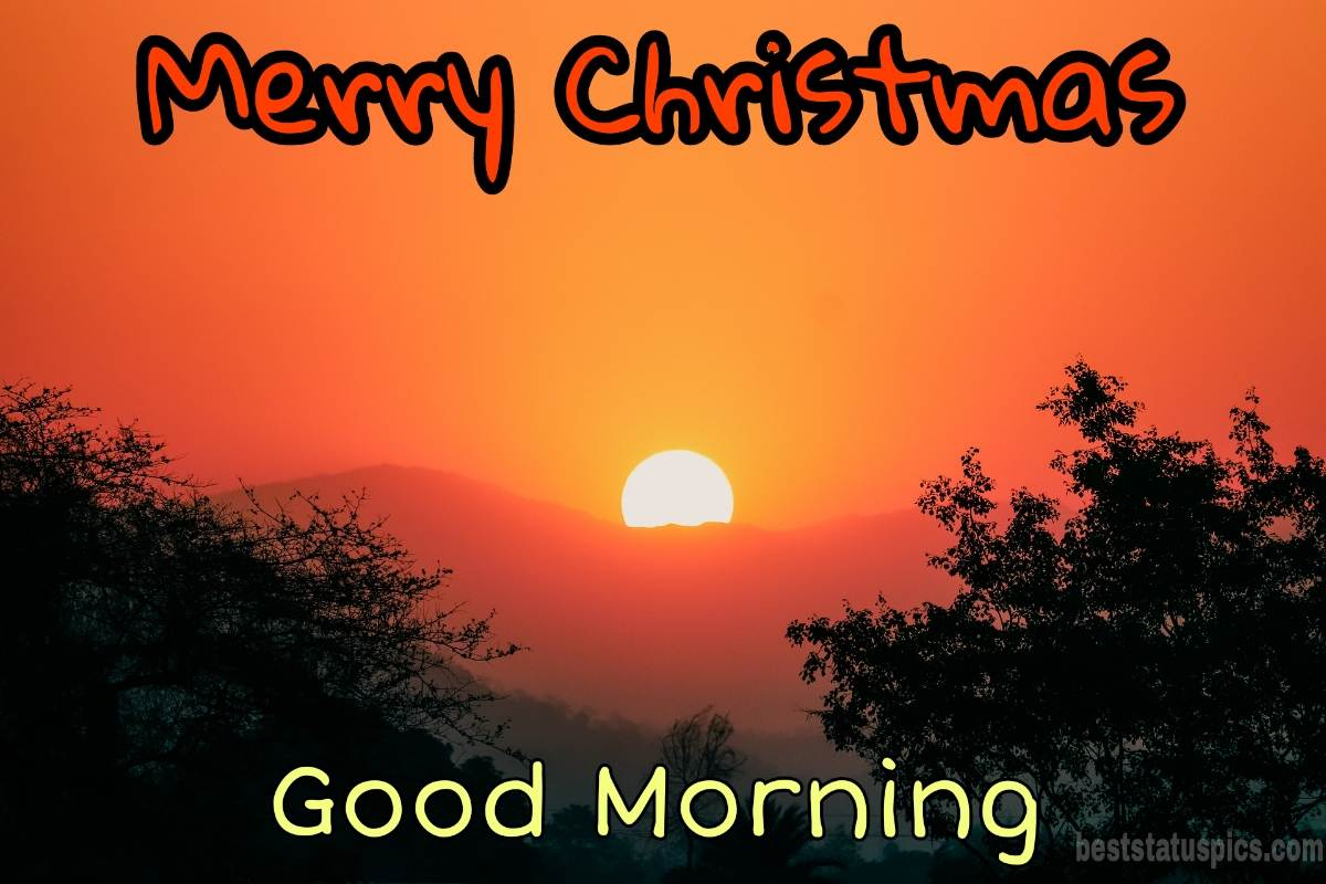 Merry christmas Good morning 2022 wallpaper and picture HD with sunshine and sunrise