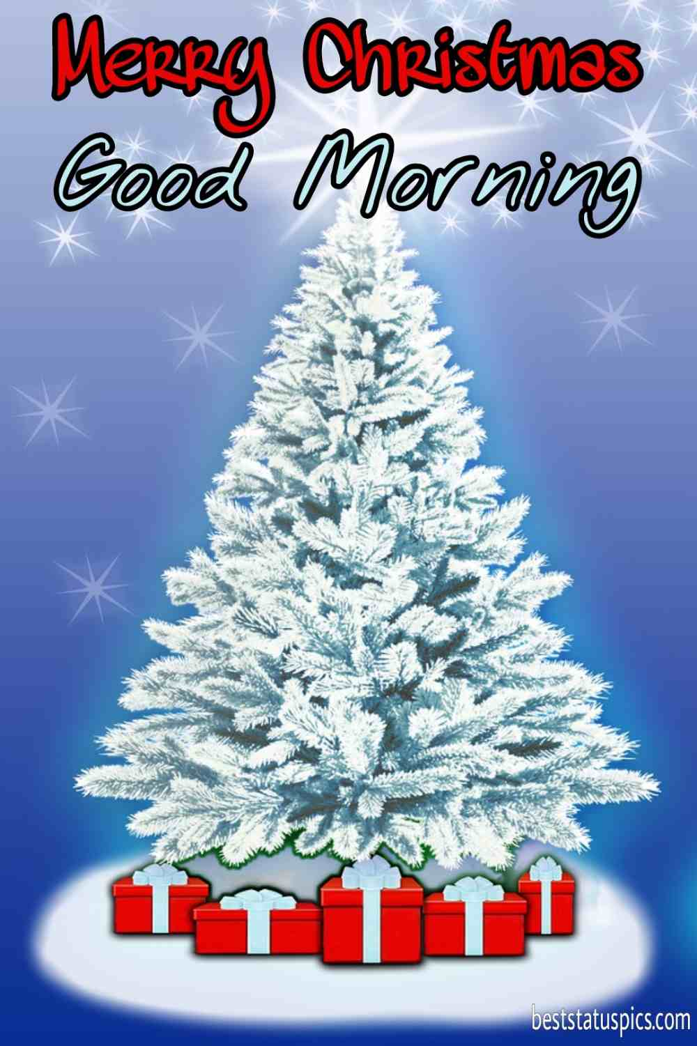 Good morning merry christmas eve 2022 greetings and images HD with xmas tree for Instagram story
