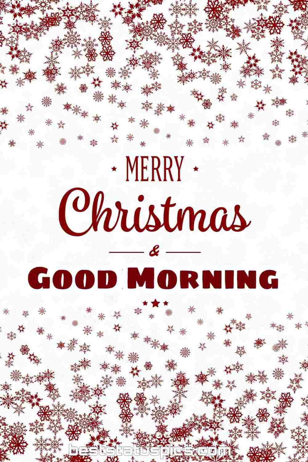 Good morning merry christmas eve 2022 greeting cards and ecard for Whatsapp DP
