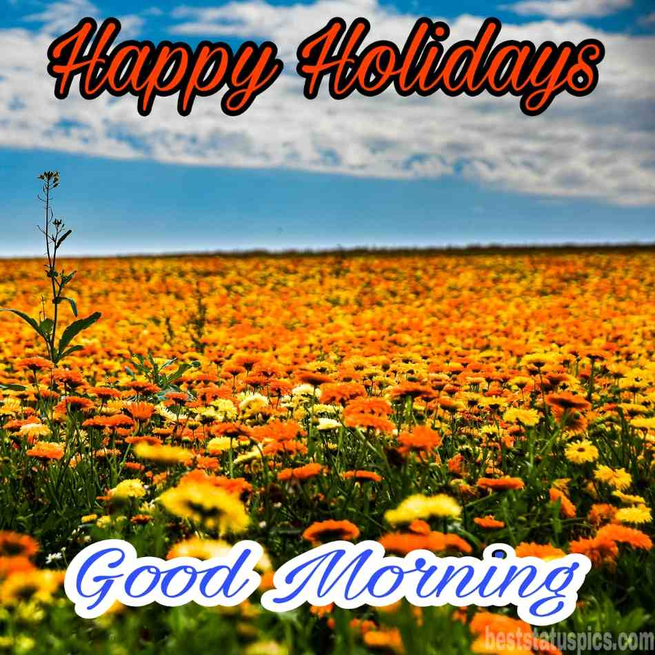 Happy holidays 2022 and good morning HD images with sunflowers