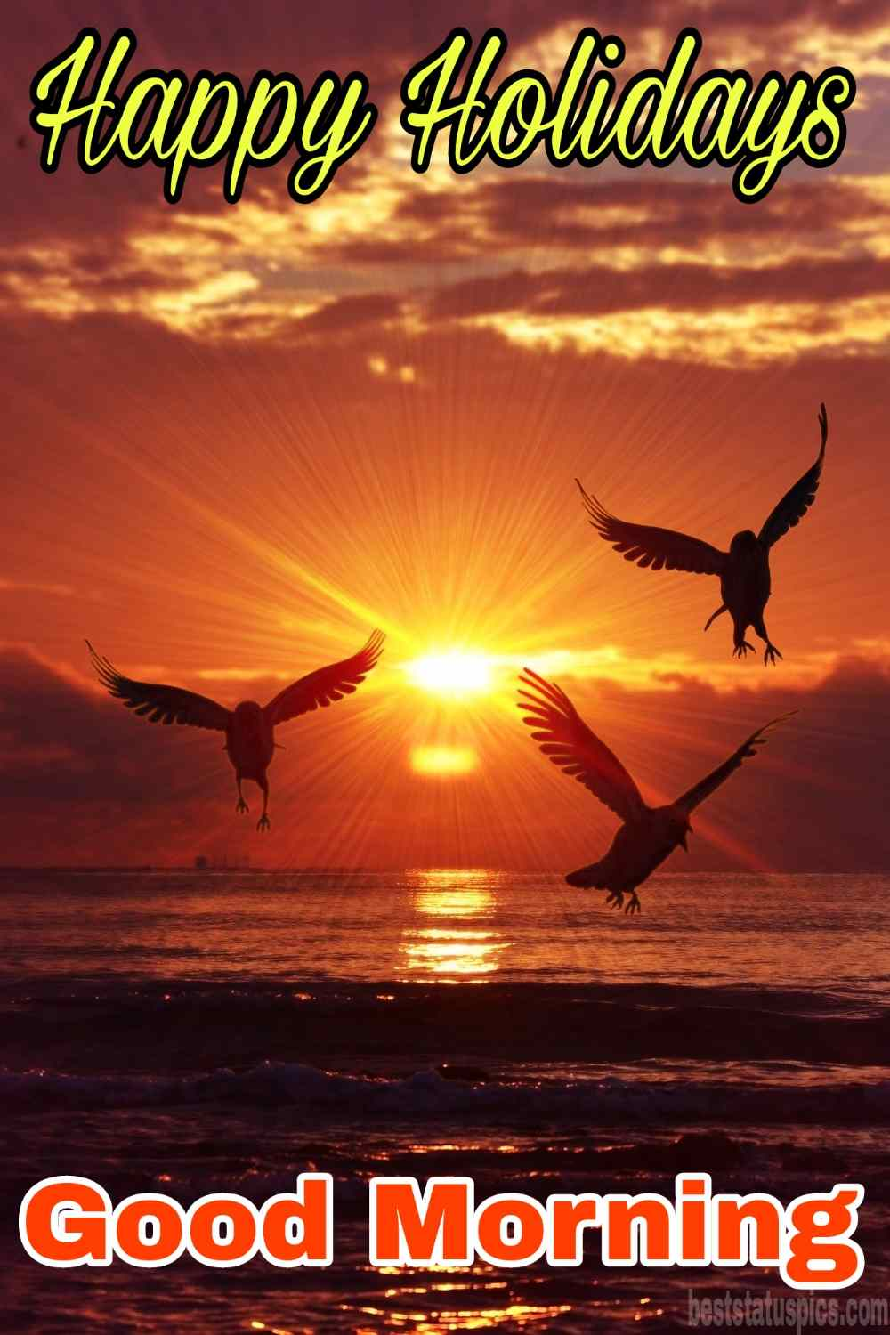 Happy holidays 2022 and good morning wishes images with birds, sea and sunrise