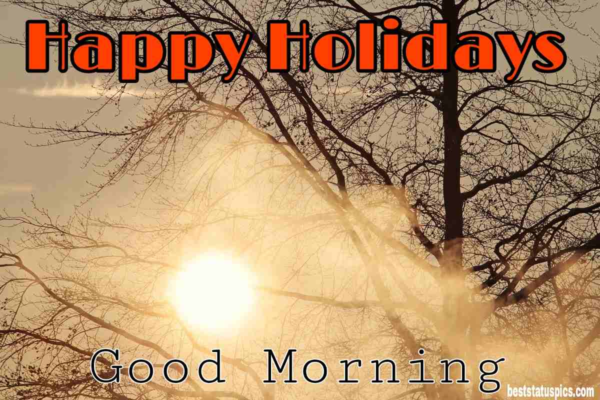Good morning happy holidays 2022 wishes picture HD with sky, tree, sunrise and sunshine