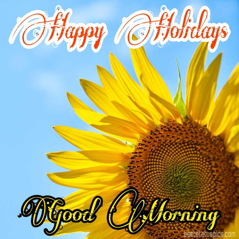 Happy holidays 2022 and good morning HD photos with sunflowers
