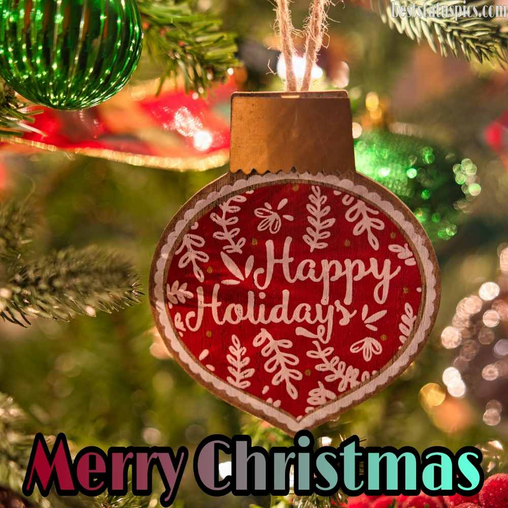Cute Merry Christmas and Happy Holidays 2022 wishes photo