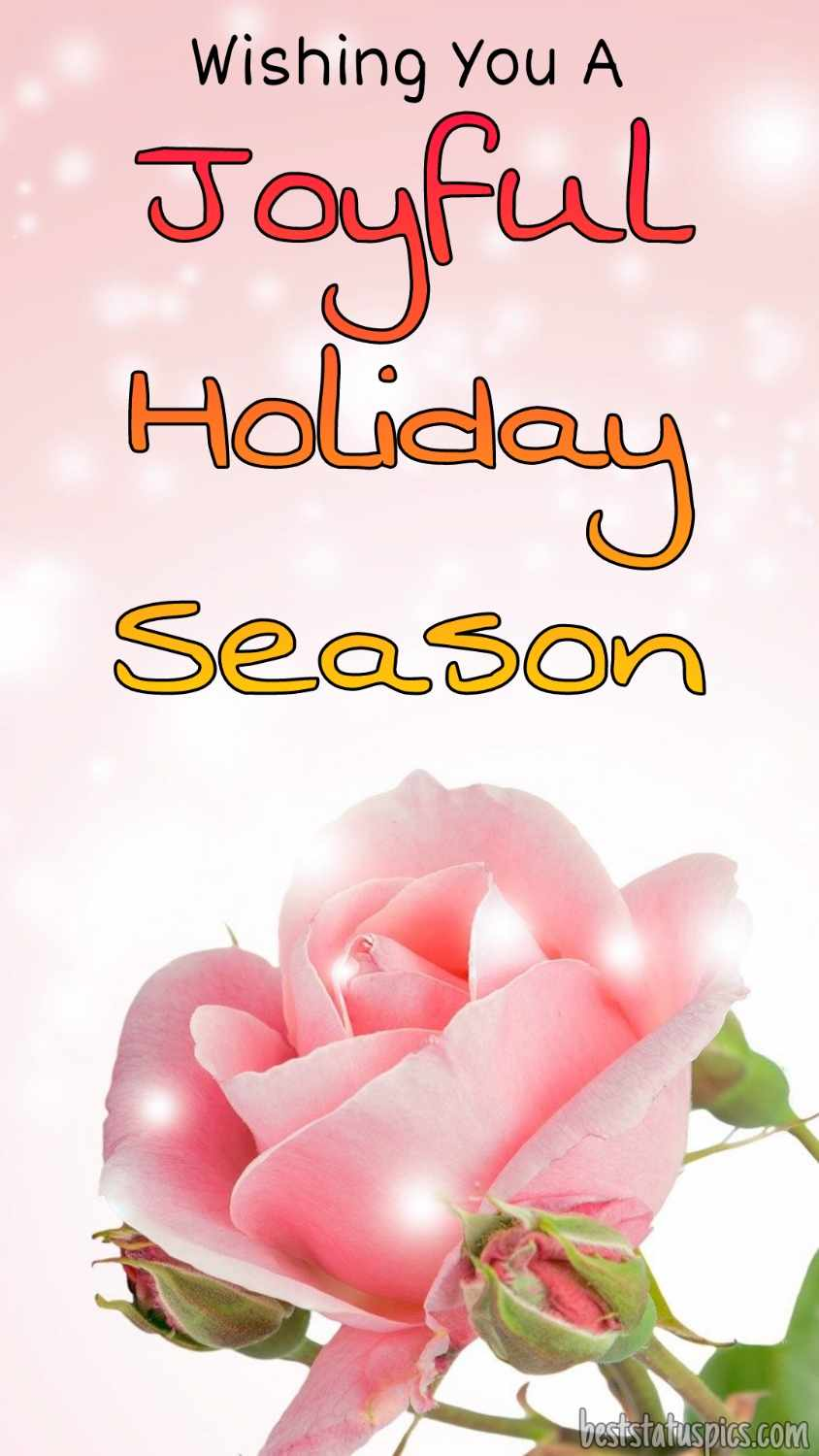 Happy holidays 2022 wishes images with pink rose for lover and girlfriend